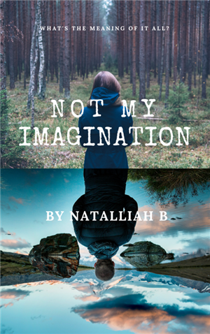Not My Imagination by Natalliah B