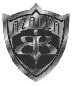 AMS Shield
