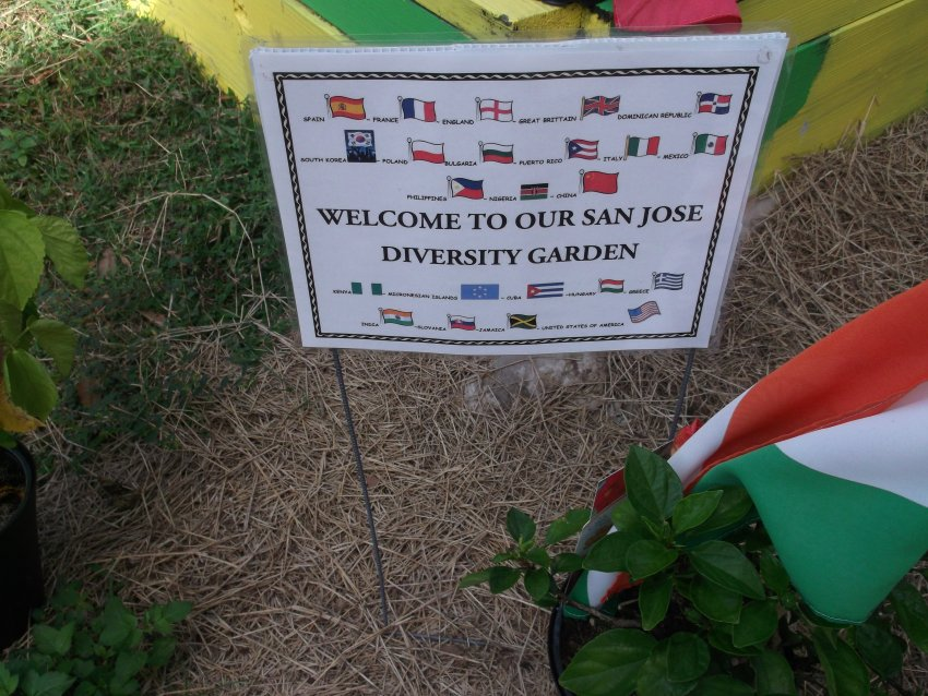 Our Own San Jose Multicultural Garden! A Collaboration of the Multicultural Team and Fuel Up To Play 60 Team!