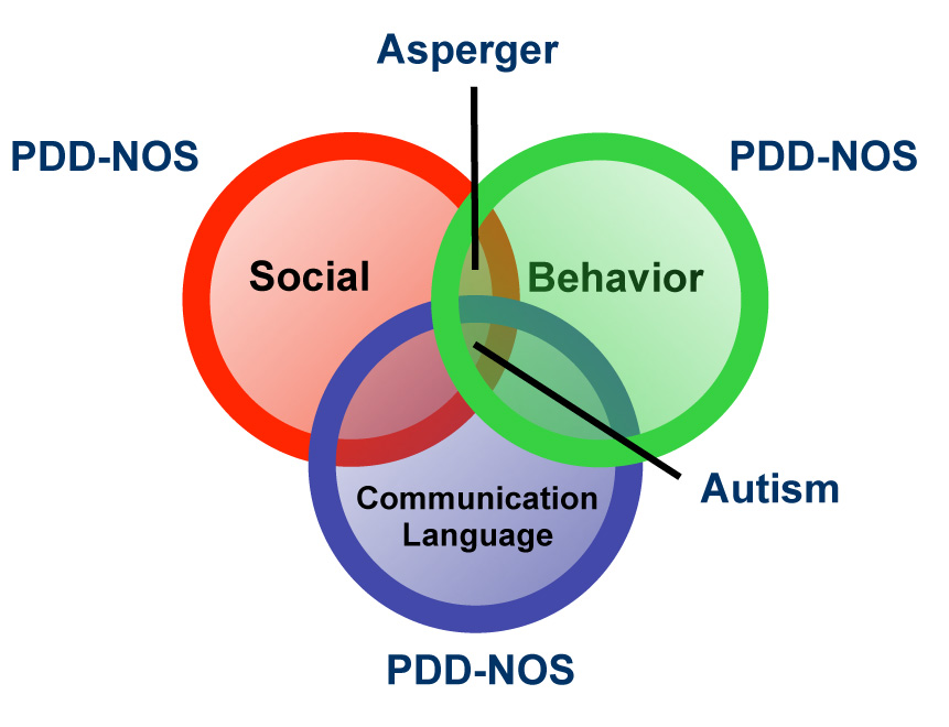 Autism labeled graphic