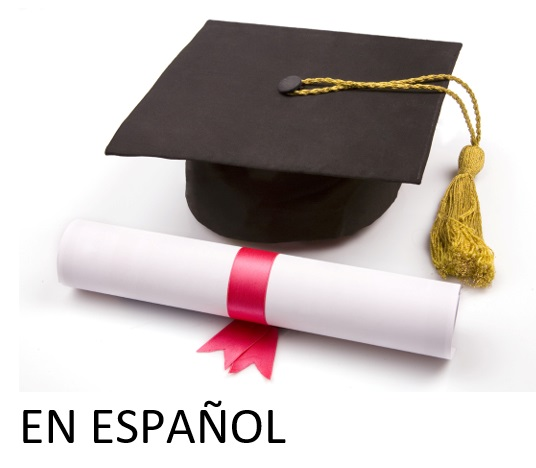 Spanish Version - Standard Diploma Requirements