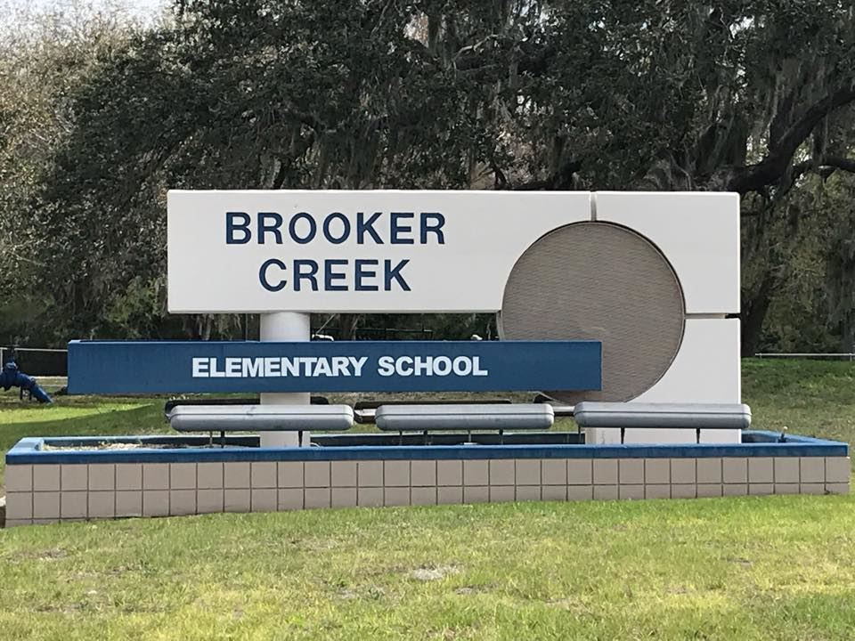 Brooker Creek Elementary Picture