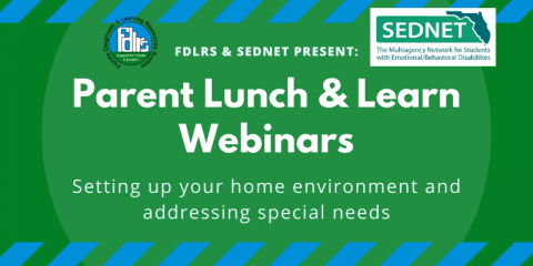 Parent Lunch & Learn Webinars