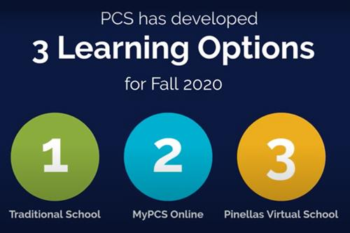 3 Learning Options